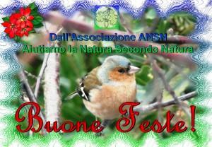 Buone Feste_Associazione_ANSN_www.ansn.it (2)