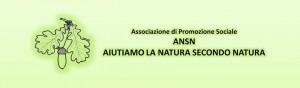 Logo_Copertina_www.ansn.it_© Sante Cericola [2015]_DEF (4)