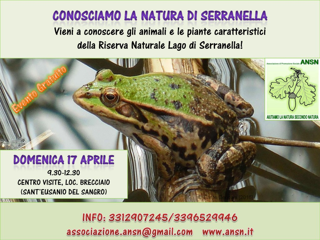 Locandina_EVENTO_ANSN_17apr2016